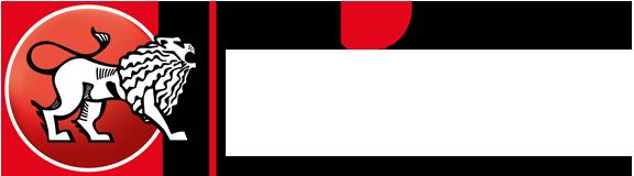 Logo LUIKI GES.m.b.H.